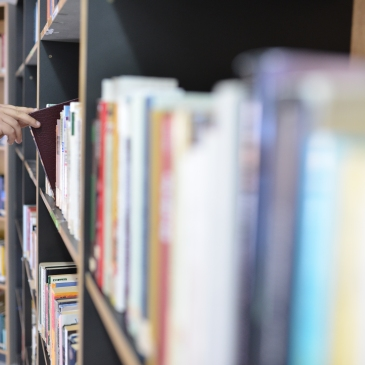 Biblioteca Comunale Mario Pellicano Castagna di Marina Di Gioiosa Ionica Img Libro