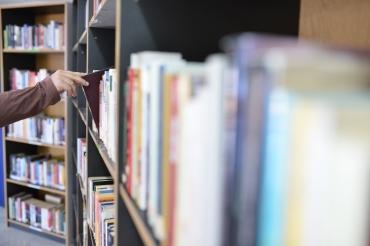 Biblioteca Comunale Mario Pellicano Castagna di Marina Di Gioiosa Ionica img