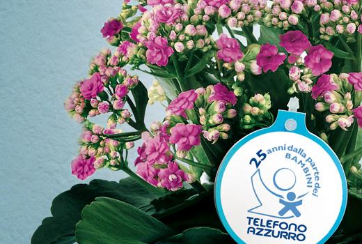 pro-loco-per-gioiosa-marina-telefono_azzurro_fiori_azzurro